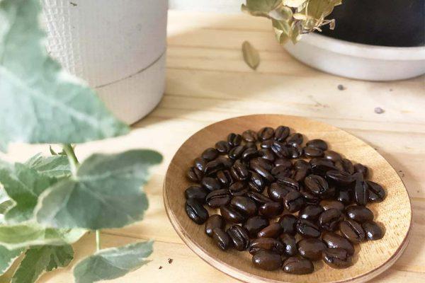 エチオピア生豆「イルガチェフェG1ハニー」 深煎り